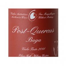 Filipa Pato Post Quercus...