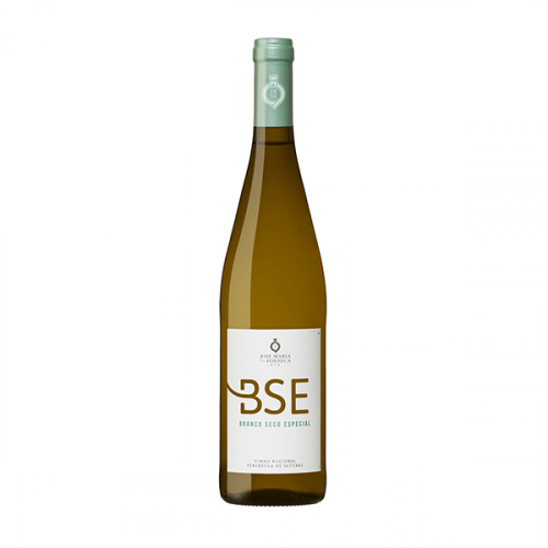 BSE White 2019