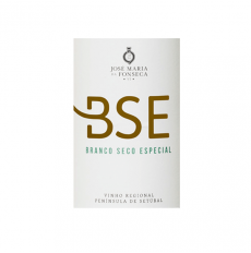 BSE Blanco 2019
