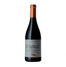 Quinta de Cabriz Riserva Rosso 2015