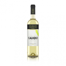 Adega Mayor Caiado White 2019