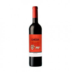 Cheda Red 2016