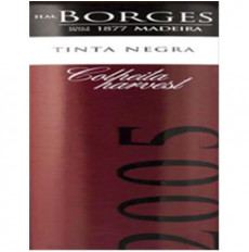 H M Borges Tinta Negra...