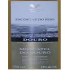 Encostas do Peso Moscatel do Douro