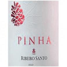 Pinha do Ribeiro Santo Rosé...