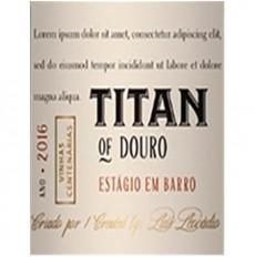 Titan of Douro Estágio em...