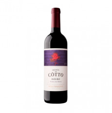 Quinta do Côtto Vinha do Dote Tinto 2015