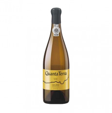 Quanta Terra Golden Edition White 2012