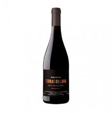 Pico Wines Terras de Lava Reserve Rot 2017