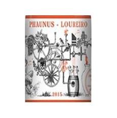 Phaunus Amphora Loureiro...