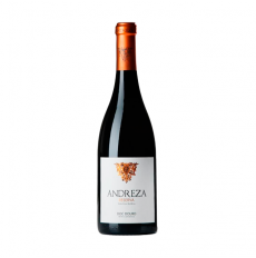 Magnum Andreza Reserve Rot 2016