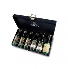 Calem 6 Porto Wines in premium case