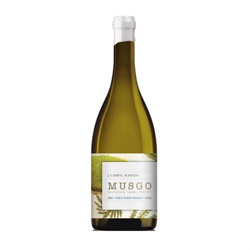 Musgo White 2018