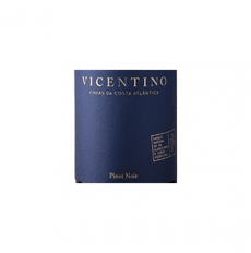 Vicentino Pinot Noir Red 2016