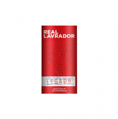 Real Lavrador Red 2019