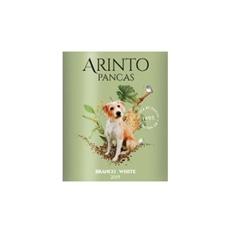 Pancas Arinto Weiß 2020