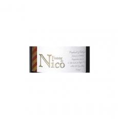 Fonte do Nico Tinto 2020