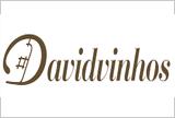 David Vinhos