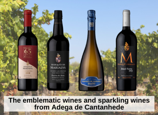 The emblematic wines and sparkling wines from Adega de Cantanhede