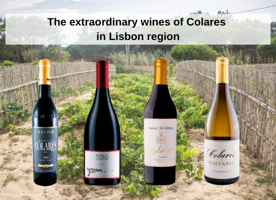 The extraordinary wines of Colares in Lisbon region