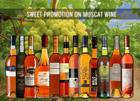 Check the selection of 12 of our bestselling Muscatel dessert wines