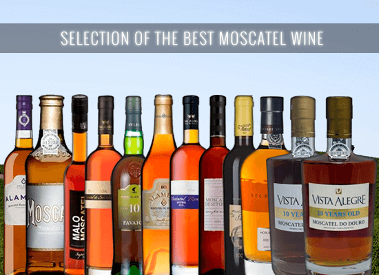 A selection of the best Muscatel Roxo, Superior and Aged Muscatel