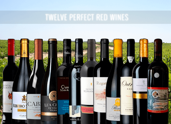 Our quest for the perfect wine leave us with twelve almost perfect red wines