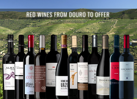 A selection of premium Douro red wines perfect for the Christmas season