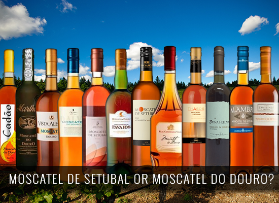 Moscatel de Setúbal or Moscatel do Douro?