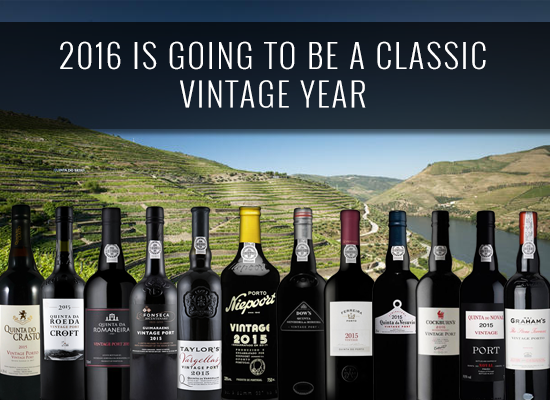 Great news for the Port wine fans: 2016 is going to be a classic vintage year, according to the industry