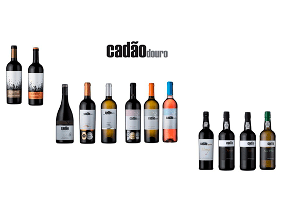 NEW IN STORE UP TO 22%: The new wines and ports from Cadão in Douro